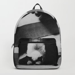 Friends on the Stairs, Siamese cat and woman passing in the night black and white photograph Backpack