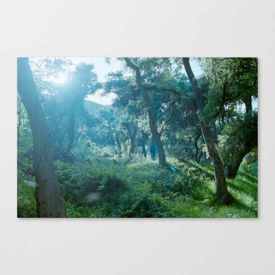 Green Forest I Canvas Print