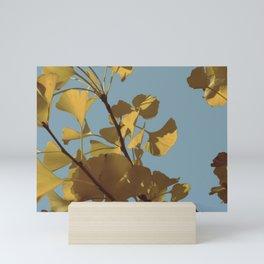 Yellow Ginkgo Leaves Mini Art Print