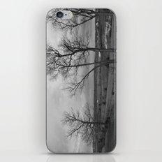 Down On The Farm iPhone & iPod Skin
