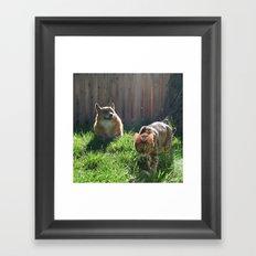 MOnty and CleO Framed Art Print