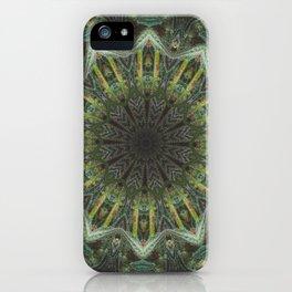 Rasta Healer iPhone Case