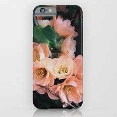 Flowering Quince iPhone 6s Slim Case
