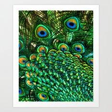 Peacocks Tail Art Print