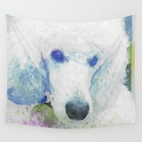 poodle Wall Tapestries featuring poodle by Sarah Jane Connors