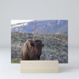 Bison Back Scratch Mini Art Print