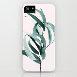 Eucalyptus II - Australian gum tree iPhone Case