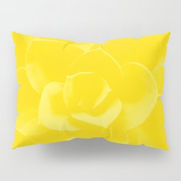 Succulent Plant Yellow Mellow Color #decor #society6 #buyart Pillow Sham