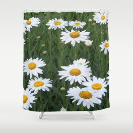 Daisies Shower Curtain