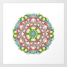 Flowers Cyrcle Art Print