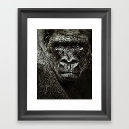 mad gorilla Framed Art Print