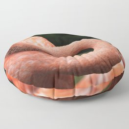 The Flamingo's Negative Space Floor Pillow