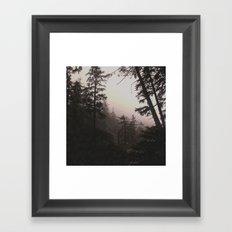 Oregon Coastal Forest Framed Art Print