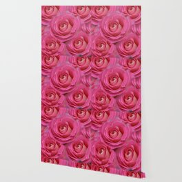 THE PINK GARDEN ROSES VIGNETTE ABSTRACT Wallpaper
