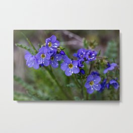 Jacob's Ladder - Yellowstone National Park Metal Print