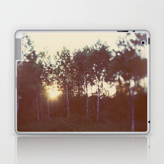 Silent Birch Laptop & iPad Skin
