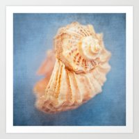 seashell Art Prints featuring Seashell by The Last Sparrow