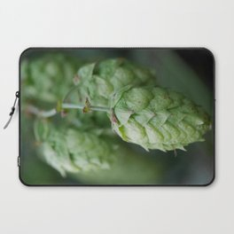 Humulus lupulus, the Common Hop Laptop Sleeve