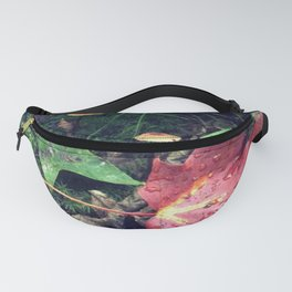 Trail Colors Fanny Pack