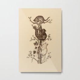 CAT UP THE TREE Metal Print