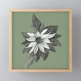 Florida Flower with Green Background Framed Mini Art Print