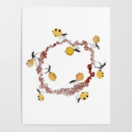 Honey Ant Roundabout Poster