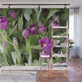 Longwood Gardens Orchid Extravaganza 25 Wall Mural