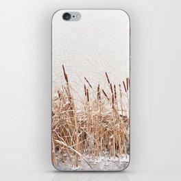 Typha reeds at frozen lake iPhone Skin