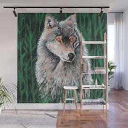 Grey Canadian Wolf Wall Mural