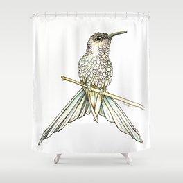 Swallowtail Hummingbird Shower Curtain