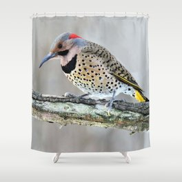 Fancy Fellow: Northern Flicker Woodpecker Shower Curtain