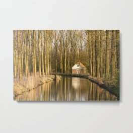 Little Lake House in the Forest Metal Print