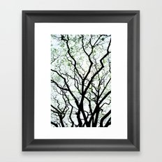 Majestic Roots Framed Art Print