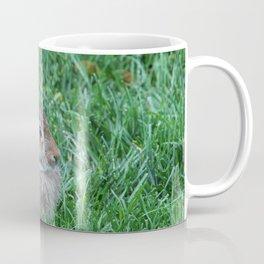 Our Backyard Bunny Coffee Mug