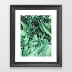 Green leafs Framed Art Print