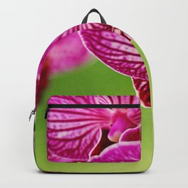 Close up Orchid #4 Backpack