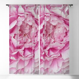 Peony Afternoon 1 Blackout Curtain