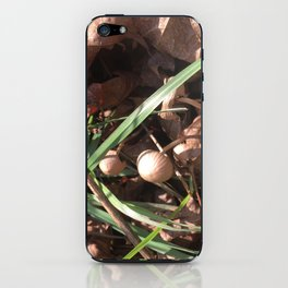Autumn grass iPhone Skin