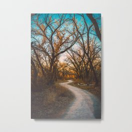 Illuminated New Mexican Trail II Metal Print