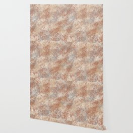 Cavern Clay SW 7701 and Abstract Distressed Chaotic Sponge Paint Pattern 2 Wallpaper