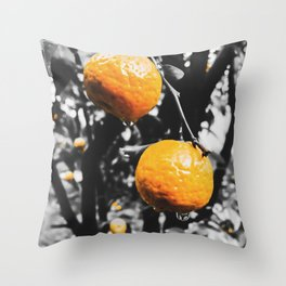 fresh orange fruit in the garden Throw Pillow