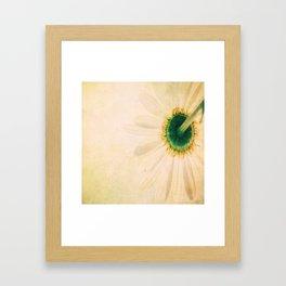 Prickly Yellow Flower Framed Art Print