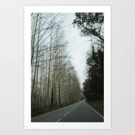 Forest road vertical Art Print