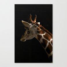 Giraffe2 Canvas Print