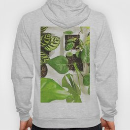Urban jungle Hoody