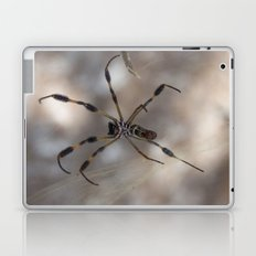 Spider 1   Picture A Laptop & iPad Skin