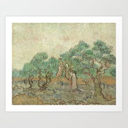 The Olive Orchard by Vincent van Gogh - Classic Art Art Print