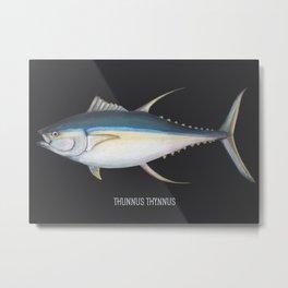 Fish Tuna Metal Print