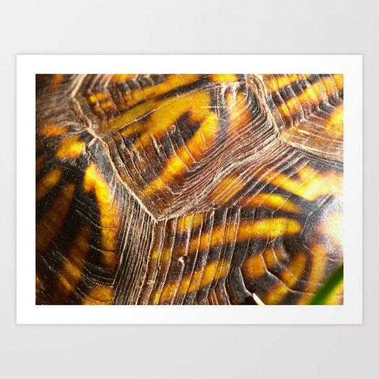 carapace Art Print