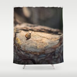 His perfect world Shower Curtain